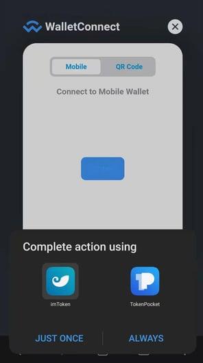 screenshot Wallet - Andirod2